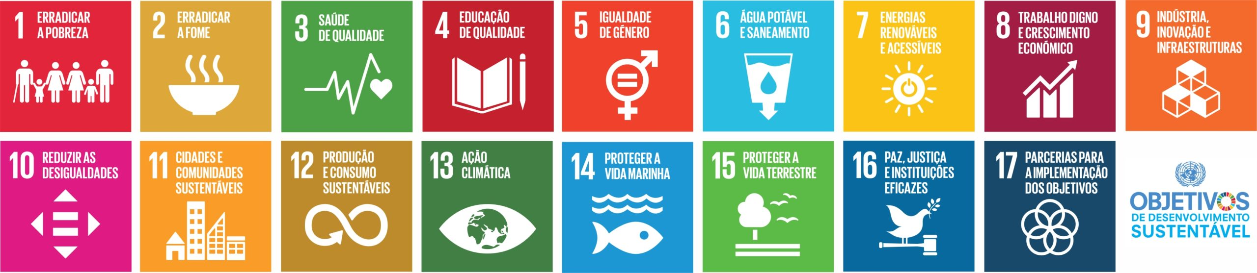Sustentabilidade: gerir o presente, preparar o futuro… MCG